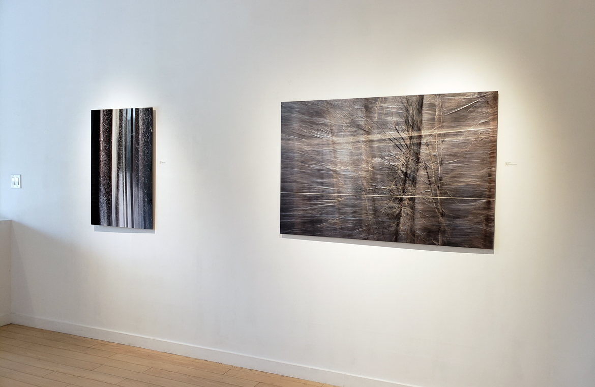 A fine line, art exhibition, contemporary art, Vancouver, Elissa Cristall Gallery